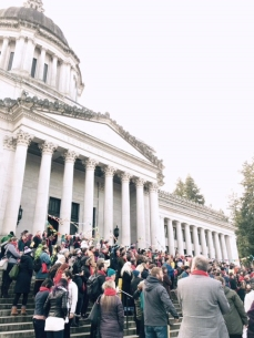 HHAD rally on the Capitol building steps.